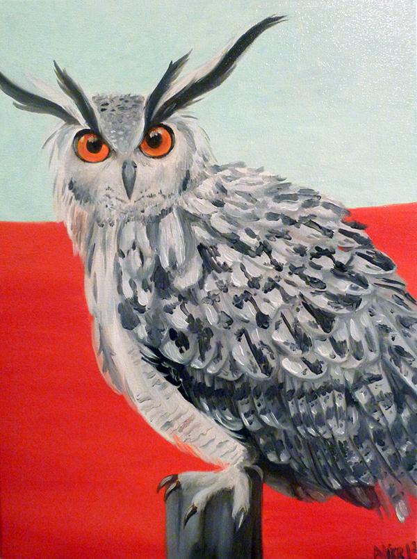 Owl - 2013