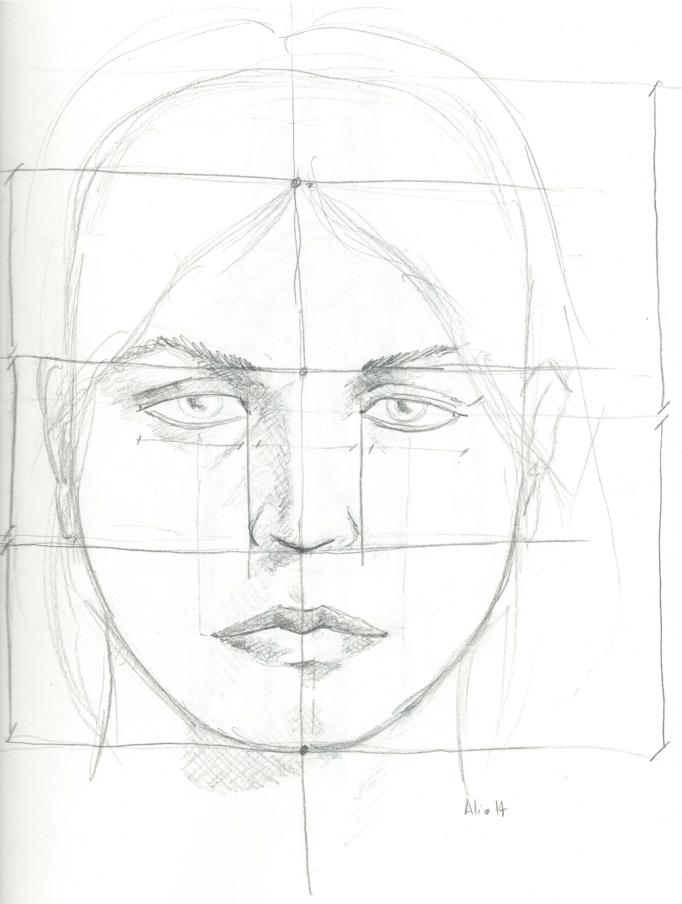 Proportions du visage